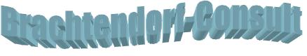 brachtendorf-consult